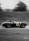 Capeland Shelby Cobra