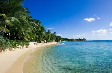 La Panerai Transat Classique 2012 : une course en direction des Caraïbes ; arrivée au port de la Barbade.