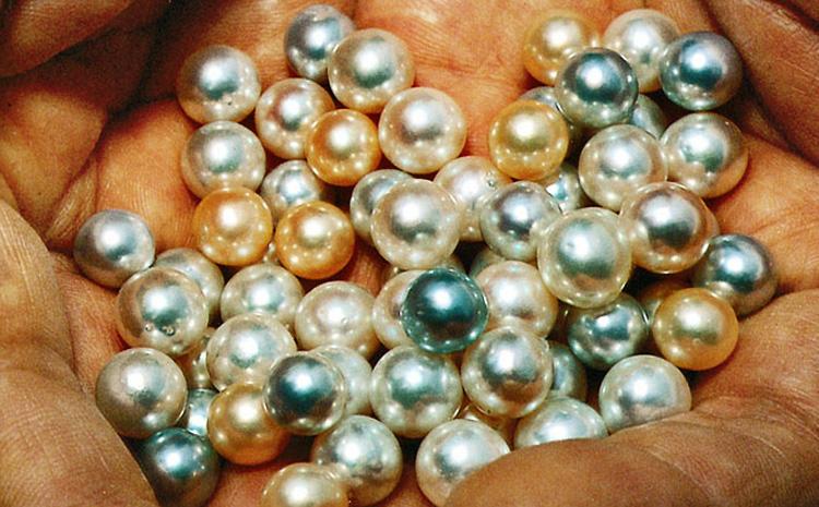 Les mille et une nuances des perles de nacre